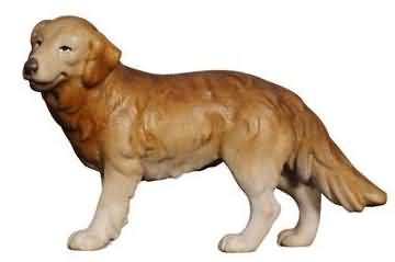 801158 Ko - Hirtenhund